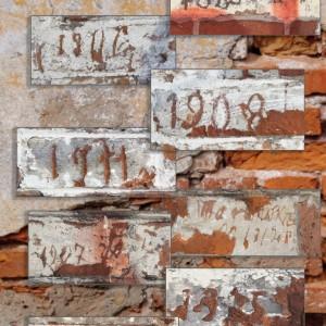 4-irasai-II-forto-sienose-web
