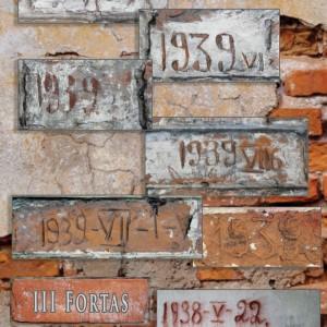 8-irasai-VII-forto-sienose-web
