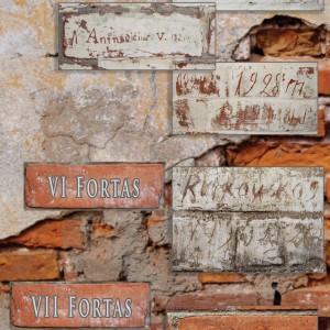 9-irasai-V-VI-ir-VII-fortu-sienose-web